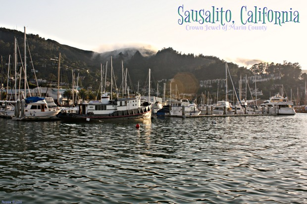 C - Loving Life in Sausalito (postcard) -signed